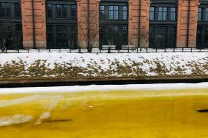 Вода Адмиралтейского и других каналов окрасилась в ярко-желтый цвет. Горожане называют водоемы «горчичными» и сравнивают с Хуанхэ