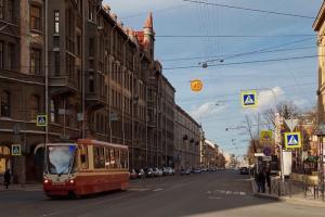Активисты движения «Зеленый Петербург» в 2021 году планируют высадить деревья на Садовой и набережной канала Грибоедова