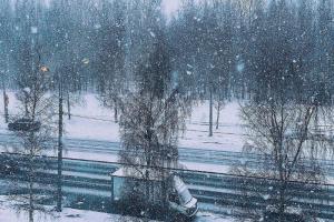В Петербурге весенний снегопад. Смотрите фотографии заснеженного города❄️❄️❄️
