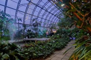 Оранжерею Таврического сада отремонтируют. Директор по развитию площадки — о новом дизайне, местах для работы под пальмами и ночных маршрутах