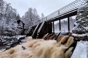 Как провести длинные выходные в Петербурге? 12 идей — от поездки на старом трамвае и прогулки у лесного озера до осмотра руин и архитектуры 1990-х