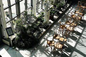 Семь неочевидных кафе Петербурга: в оранжерее, флигеле, велокооперативе и во дворах