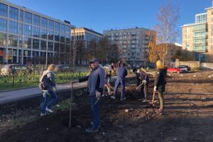 Хотите посадить дерево в Петербурге? Вот инструкция активистов о том, как сделать это легально 🌳