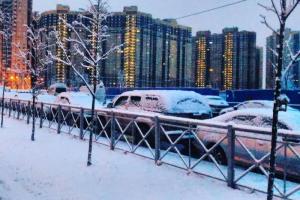 За ночь в Петербурге выпало около 15 % от месячной нормы осадков. В течение дня синоптики ждут дождь, мокрый снег и снежную крупу