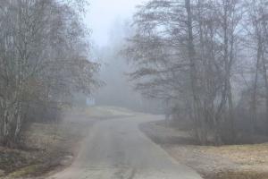 В Петербурге густой туман — вот окутанные им дороги, церкви и «Лахта Центр». Смотрите фото 🌫️