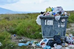 Greenpeace исследовал переработку одноразовых товаров и упаковки в Петербурге и Ленобласти. Оказалось, что многие предметы отправляют на свалку