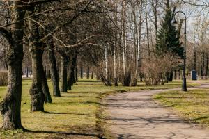 В Петербурге после просушки открыли все парки и скверы. Зачем вообще их закрывают каждый год? Отвечает комитет по благоустройству