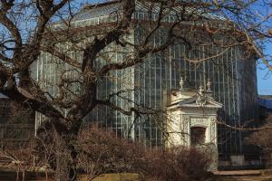 С 1 мая подорожают входные билеты вБотанический сад Петра Великого