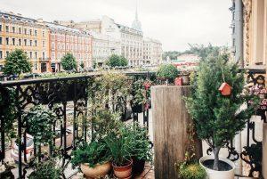 Как сделать из балкона маленький сад и что нужно знать о ветре, горшках и саженцах? Простая инструкция по озеленению 🌿