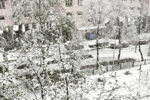 Кажется, мы стали забывать, что майский снег в Петербурге — далеко не редкость. Он выпадает минимум третий год подряд🌨️