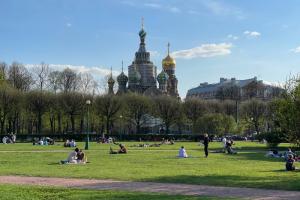 Чем заняться в Петербурге 14–16 мая? Новые бары, высадка деревьев и маршруты для прогулок