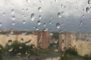 В Петербурге 26 мая ожидают усиление ветра, дождь и похолодание 🌧