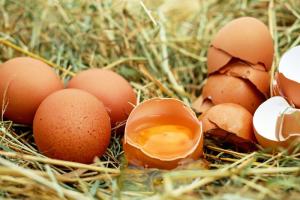 Производители куриных яиц предупредили о возможном дефиците продукции. Минсельхоз заявил о стабильной ситуации