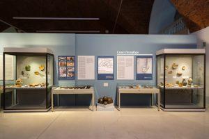 Эрмитаж открыл выставку археологических находок на Охтинском мысу. Вот три фото этой экспозиции