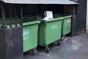 В Петербурге вводят штраф для горожан, которые паркуют машины на подъезде к мусорным контейнерам