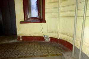 Депутаты Закса попросили Беглова разобраться с трещинами на доме Чубакова на Васильевском острове. В Смольном считали повреждения допустимыми