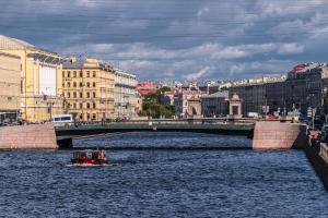 В реке Фонтанке заметили мертвого тюлененка. Зоозащитники говорят, что животное могло оказаться в Петербурге весной из-за резкого потепления
