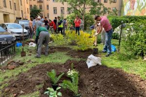 Петербуржцы озеленили двор на улице Жуковского. Они высадили кусты и папоротник страусник