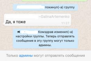 В Петербурге журналисты спросили чиновников о возросших госпитализациях в чате WhatsApp. Им запретили отправлять сообщения 😶