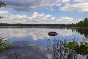 Где в Петербурге и Ленобласти можно купаться? Безопасно ли плавать в заливе? А что с лесными озерами?