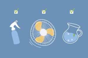 Что успели сделать за аномальную жару? Чек-лист