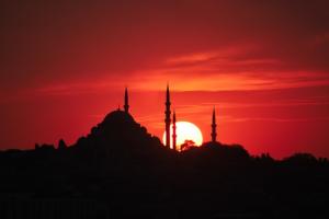 Турция теперь принимает туристов из РФ, привитых любой из российских вакцин