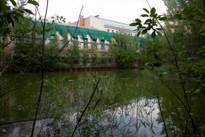 Здание Пробирной палаты на канале Грибоедова могут восстановить. Сейчас там находится пруд