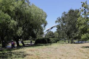 Беглов поручил провести масштабное благоустройство парка Авиаторов. Реконструкцию пространства начнут в следующем году