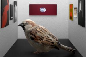 «Птицы похожи на арт-критиков»: петербургский художник установил на Каменном острове кормушку с картинами. Вот что хотел сказать автор 🕊️