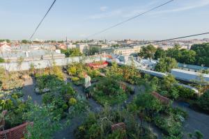 Сад на крыше многоэтажки — а что, так можно было? Ландшафтный дизайнер Вячеслав Алексеев уже 10 лет выращивает цветы и деревья на высоте 9 этажей 🌳🌾