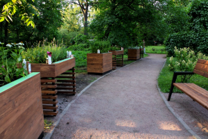 В Ботсаду появится Сенсорный сад, адаптированный под людей с инвалидностью. Показываем, как выглядит новая площадка 🌿