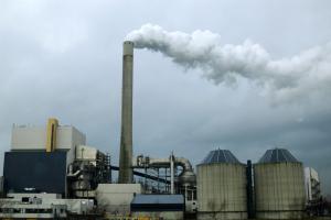 Greenpeace: эксперты правительства отклонили инициативу экоактивистов об отказе от мусоросжигания. Их решение будут оспаривать в суде