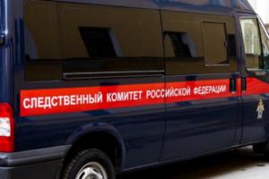В Петербурге умер младенец, в легком которого обнаружили иглу. СК возбудил уголовное дело и организовал проверку медучреждений