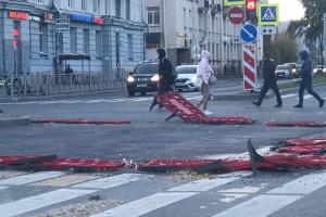 В Петербурге сильный ветер. Он повалил деревья, дорожные знаки и ограждения 💨