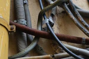 Кажется, что это просто фото проводов в Коломне. Но присмотритесь —между ними притаилась змея!