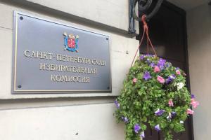 Что произошло на участке в Павловске, который якобы заминировали? Версия руководителя группы ЦИК по Петербургу