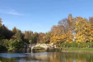 Елагин остров или Юсуповский сад? Проверьте, насколько хорошо вы знаете петербургские парки, — ведь уже золотая осень 🍂