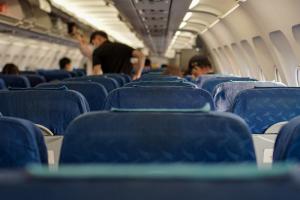 Самолет из Антальи совершил аварийную посадку в Пулкове из-за попадания в стаю птиц. Прокуратура и СК проводят проверку