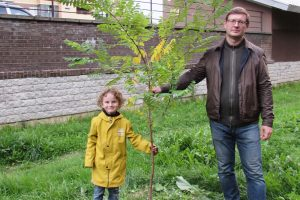«За пять лет я вырастил больше 200 деревьев». Петербуржец рассказывает, как живет с домашним лесом на подоконниках и зачем озеленяет город растениями со всего мира