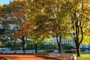 Сентябрь в Петербурге стал самым холодным за последние 25 лет 🍂