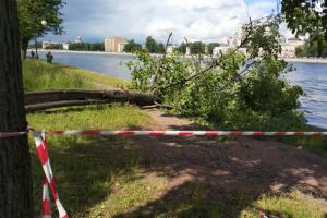 В Петербурге из-за непогоды закрыли парки и скверы. Рассказываем, куда временно не попасть