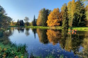 В Петербурге — золотая осень. Горожане заполонили парки, плетут венки и, конечно же, фотографируются с опавшими листьями
