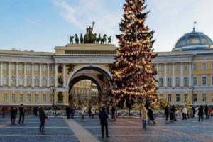 Петербуржцы снова выбрали живую ель на Дворцовой вместо искусственной