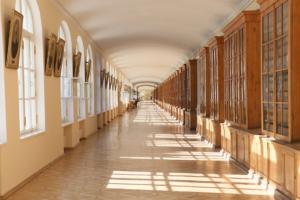 Выпускники СПбГУ выступили против переезда университета в Пушкин. Среди причин недовольства — удаленность от центра иразрыв с исторически значимым местом