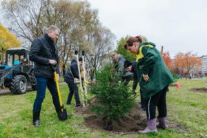 Петербуржцев приглашают высадить деревья в городских парках. Вот расписание акций