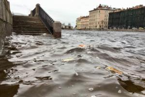 В пятницу в Петербурге ожидают шторм и наводнение. У Финского залива — порывы ветра до 28 м/с