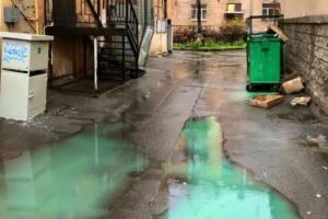 В Петербурге дождь смыл зеленую краску с мусорных баков. В соцсетях называют район Готэмом и шутят, что это искусство