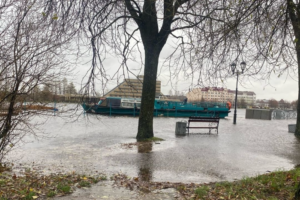 Шторм «Хендрик» покинул Петербург иЛенобласть. Показываем, как он повалил деревья и затопил Сестрорецк иВыборг. Обновлено